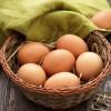 8 sự thật về trứng nhiều người chưa biết