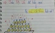 Sổ học tiếng Anh 'độc nhất vô nhị' cho học trò
