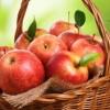 Ăn táo mỗi ngày, bí kíp đơn giản giúp đầu óc minh mẫn