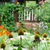 Khi già rồi, tôi sẽ tìm một mảnh vườn nhỏ, trước nhà trồng hoa, sau nhà trồng rau, 1 bữa trà 1 bữa cơm, cùng 1 người san sẻ