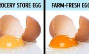 10 mẹo giúp bạn kiểm tra chất lượng thức ăn hàng ngày